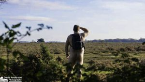 Mogshade Hill Naturist Hike Hampshire New Forest